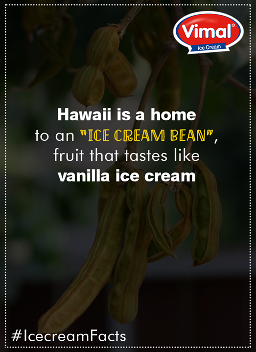 Vimal Ice Cream,  IcecreamFacts, VimalIceCreams, IceCreamLovers