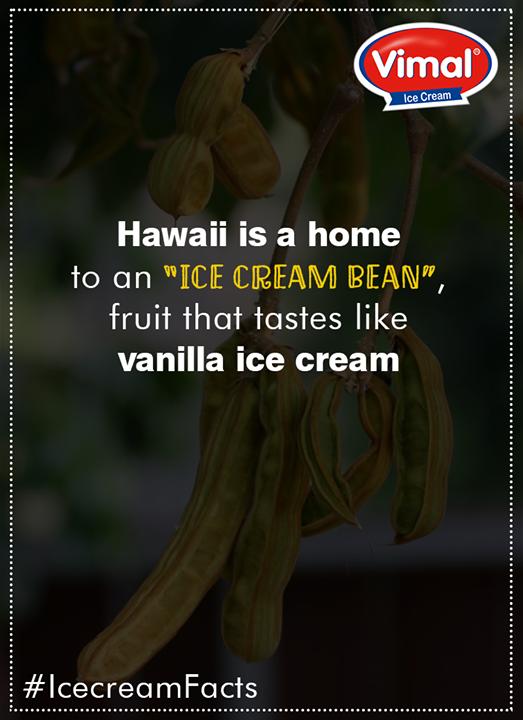 #IcecreamFacts #VimalIceCreams #IceCreamLovers