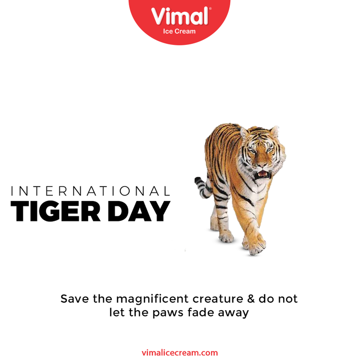 Save the magnificent creature & do not let the paws fade away  #InternationalTigerDay #InternationalTigerDay2021 #TigerDay #SaveTheTiger #Tigers #VimalIceCream #IceCreamLovers #Vimal #IceCream #Ahmedabad